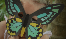 Ten top butterfly activities