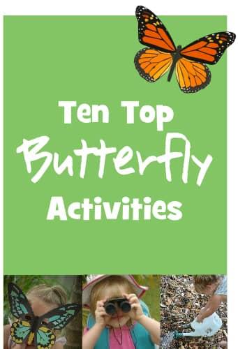 Ten Top Butterfly Activities