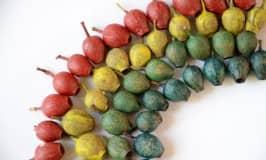 Rainbow gumnut craft for fine motor fun