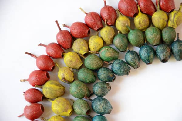 Rainbow gumnut craft for fine motor fun