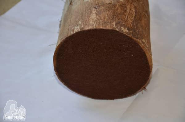 Stump pencil holder