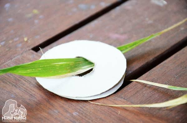 Grass craft activity