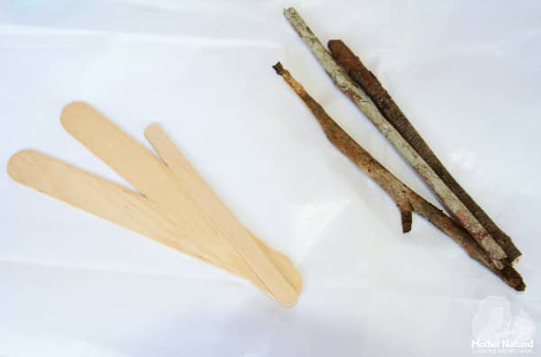 Nature Craft Materials