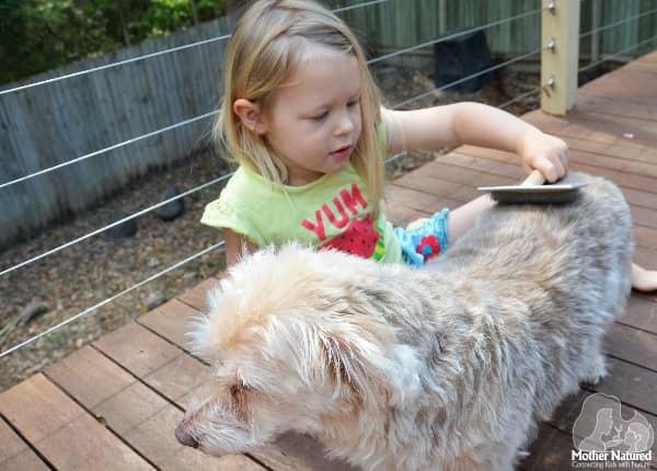 Pet pampering