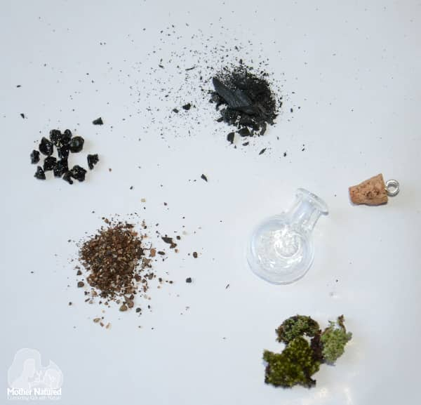 Terrarium Necklace ingredients
