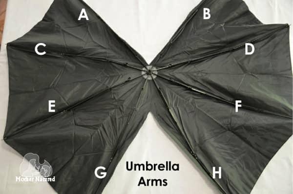 4. umbrella arms