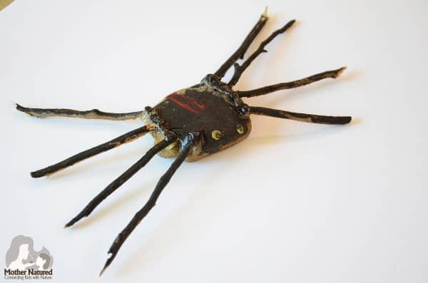 Red Back Spider craft