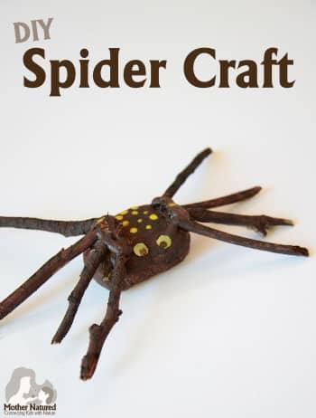 Spider Craft Idea