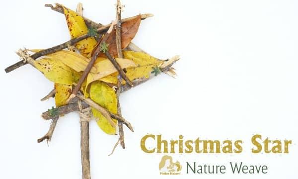 Christmas Star Craft - Easy and so pretty!