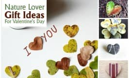 Nature lover gift ideas for Valentine's Day