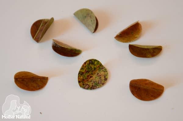 Nature Paper Ball