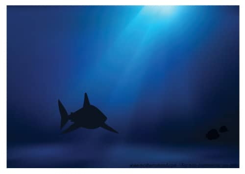 Fish Tank background shark