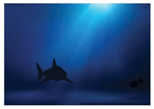 Fish Tank background shark