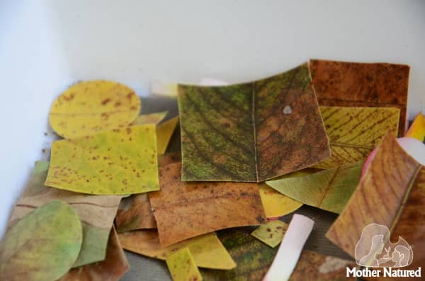 Shapes using leaves
