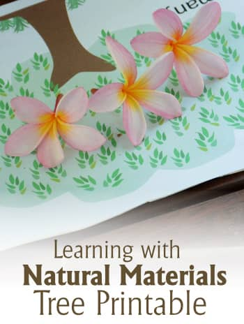 Learning Numbers with Natural Materials free Tree Printable
