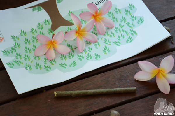 Learning with Natural Materials