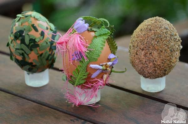 Nature Eggs