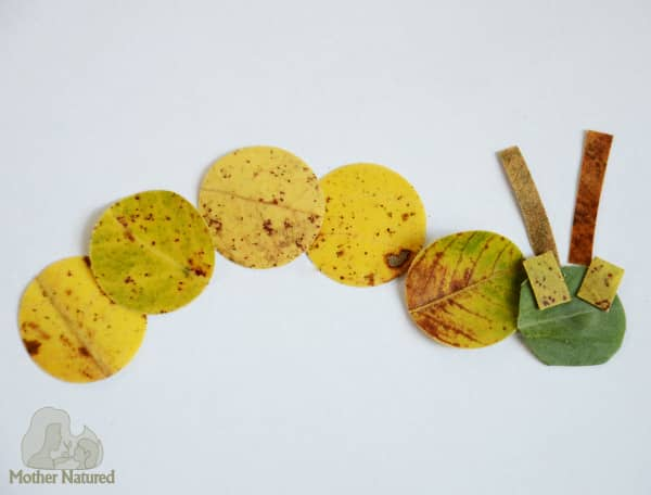 Leaf Shape Play: The Fun Way To Play With Shapes!