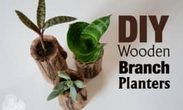 DIY Wooden Branch Planter pots