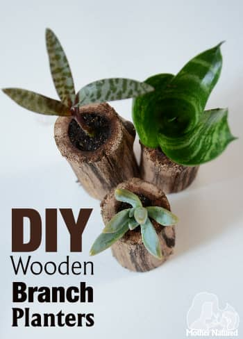 DIY Wooden Planter Succulent Pots