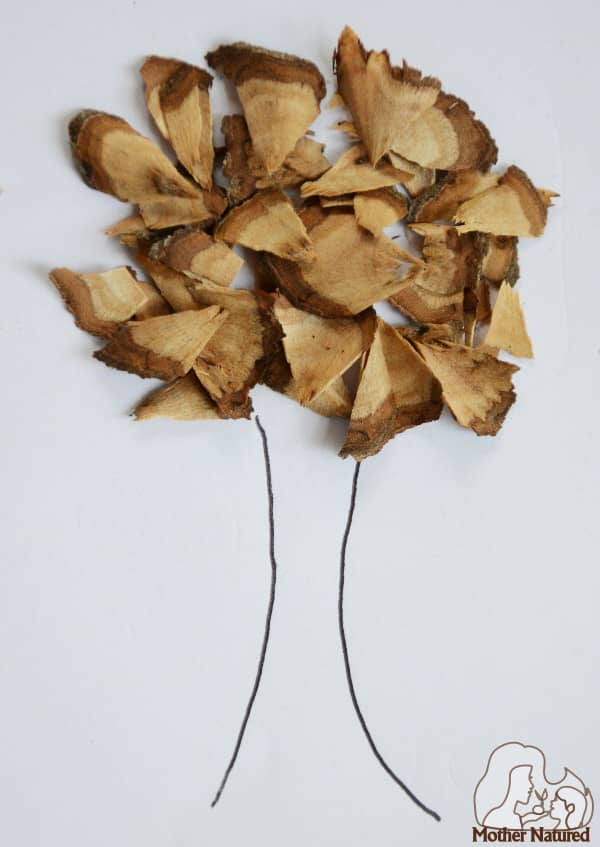Nature Crafts - Wood shavings