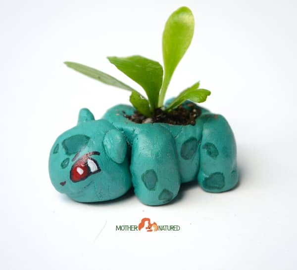 Pokemon Nature Craft