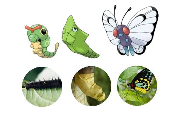 Incredible Educational Pokemon Activities for kids