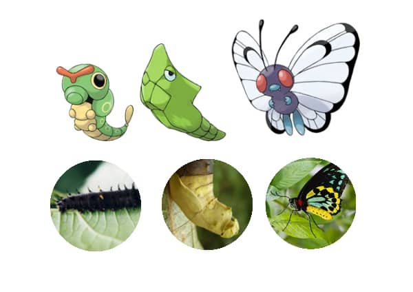 Educational Pokemon Activities web