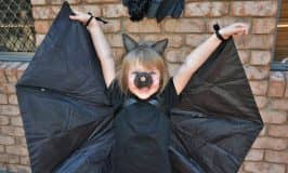 Make a bat wing costume using an umbrella