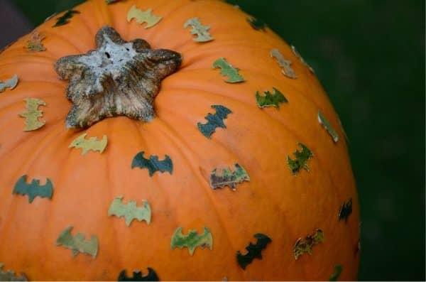 Decorated bat themed pumpkin craft for Halloween
