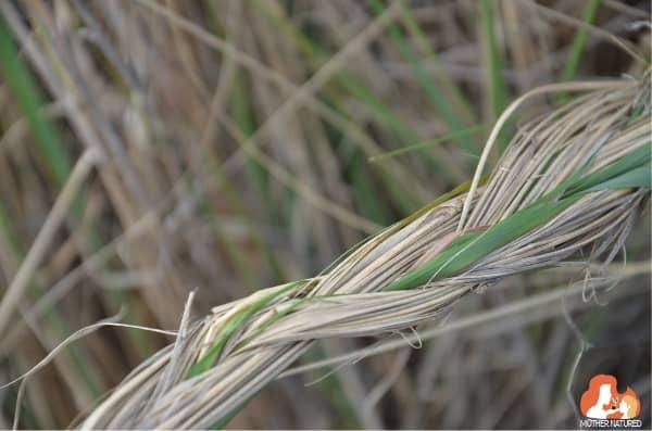 Braid using grass