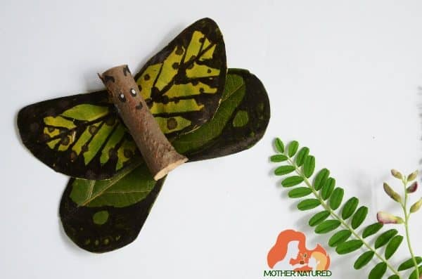 A butterfly nature craft that will create memories!