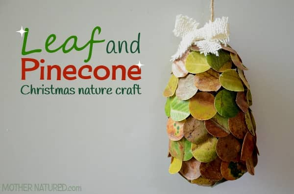 Leaf and Pinecone Christmas Craft