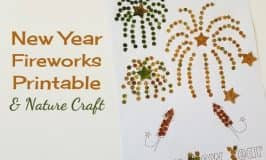 New Years Day fireworks printable & nature craft