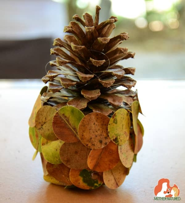 Pinecone and Leaf nature craft