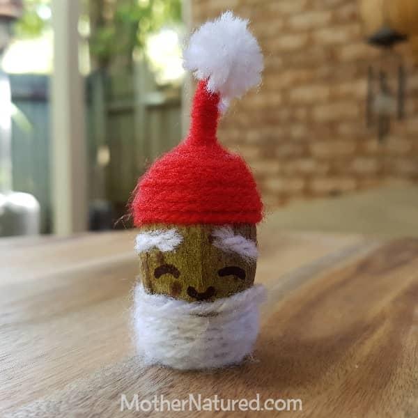 Santa Gumnut