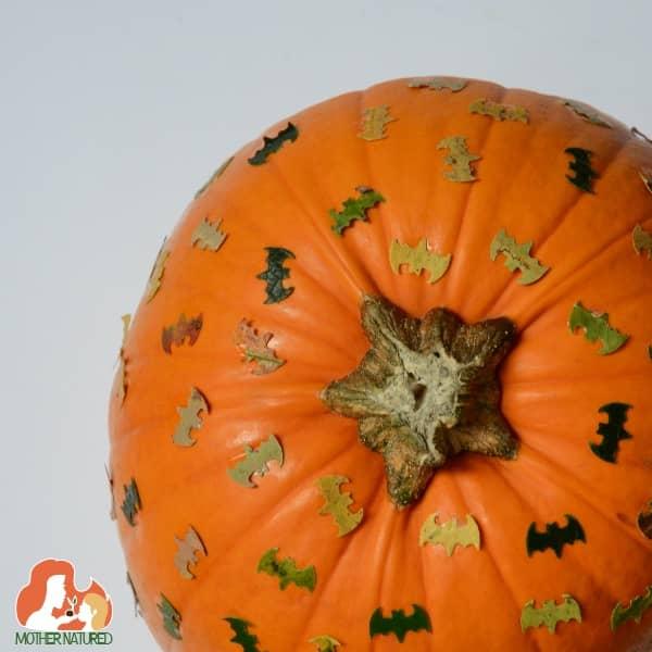 bat themed pumpkin craft