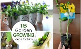 18 garden GROWING ideas for kids