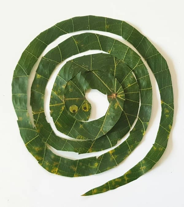 snake-leaf-craft