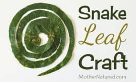 Sssuper simple snake leaf craft for kids