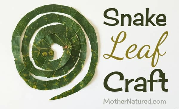 leaf snake craft