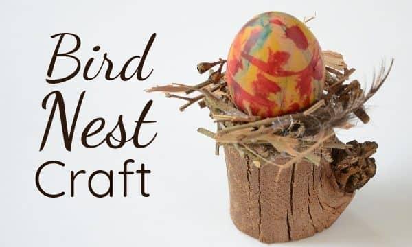 Beautiful bird nest craft