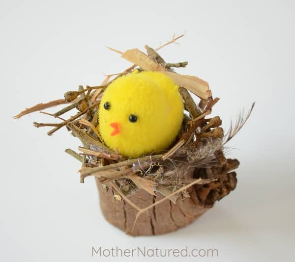 Bird nest and chick craft