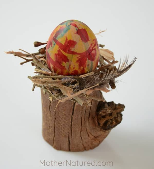 Egg in bird nest craft