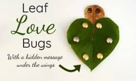 Leaf love bug: the cutest nature craft to say I love you