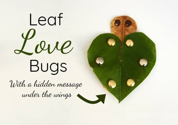 Love bugs Craft leaves