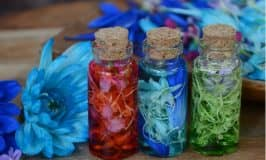 Flower petal potions: your go to flower petal activity!