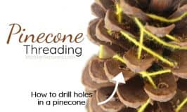 Try something different: Pinecone threading for kids