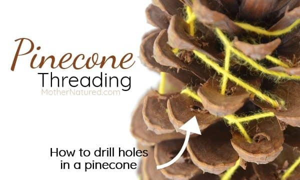Pinecone threading for kids