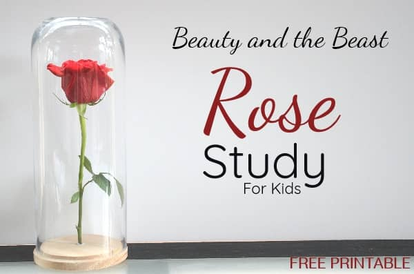 Beauty and the Beast Rose Activity